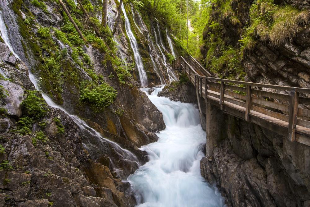 Natur16-1000.jpg